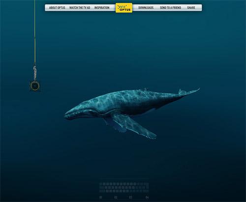 optus_whale.jpg