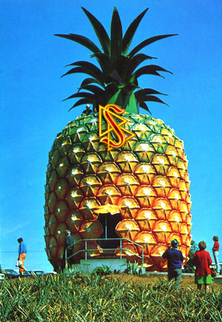 the_big_pineapple_scientolo.jpg