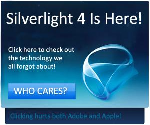 silverlight2.jpg